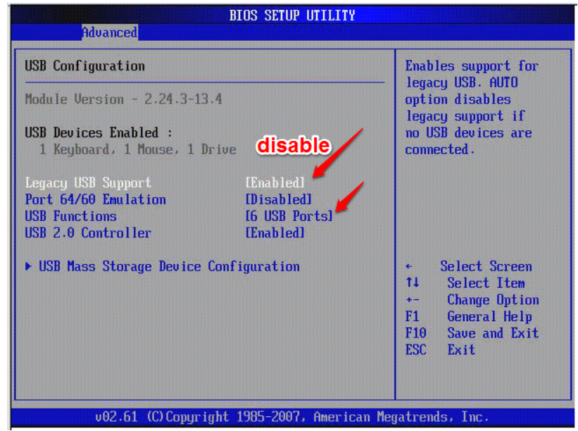 Disable or Enable Usb Ports in BIOS